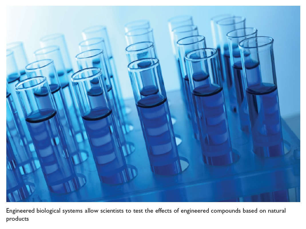 Figure 4 Engineered biological systems allow scientists to test the effects of engineered compounds based on natural products