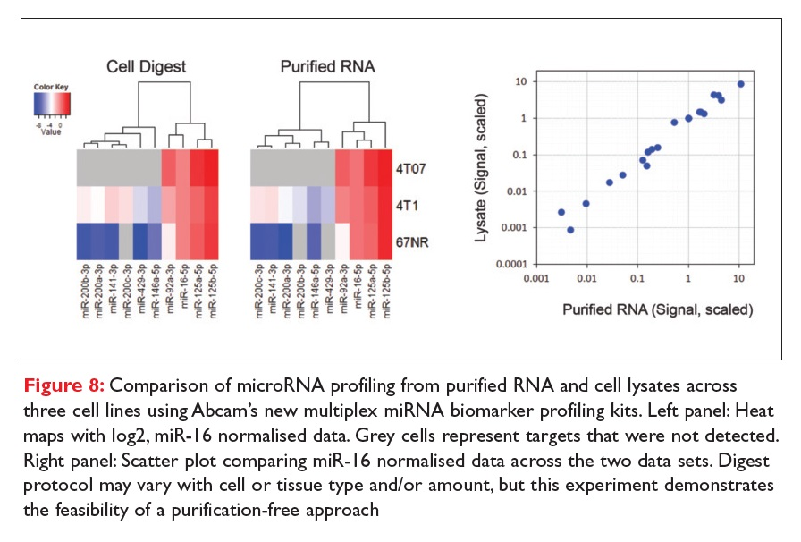 Figure 8 Comparison of microRNA profiling from purified RNA and cell lysates across three cell lines using Abcam's new multiplex miRNA biomarker profiling kits