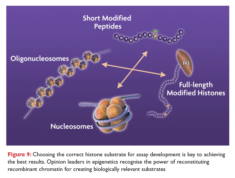 Figure 9 Choosing the correct histone substrate for assay development
