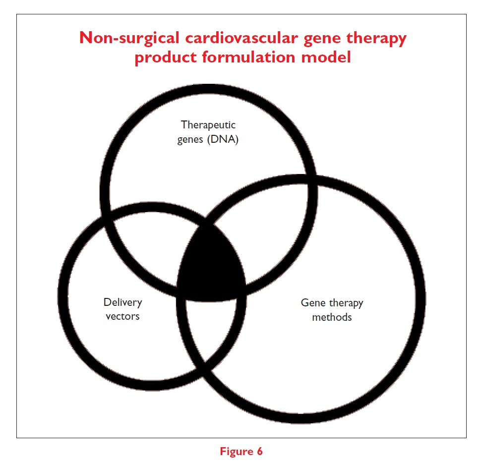Figure 6 Non-surgical cardiovascular gene therapy product formulation model