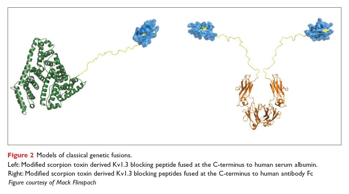 Figure 2 Models of classical genetic fusions