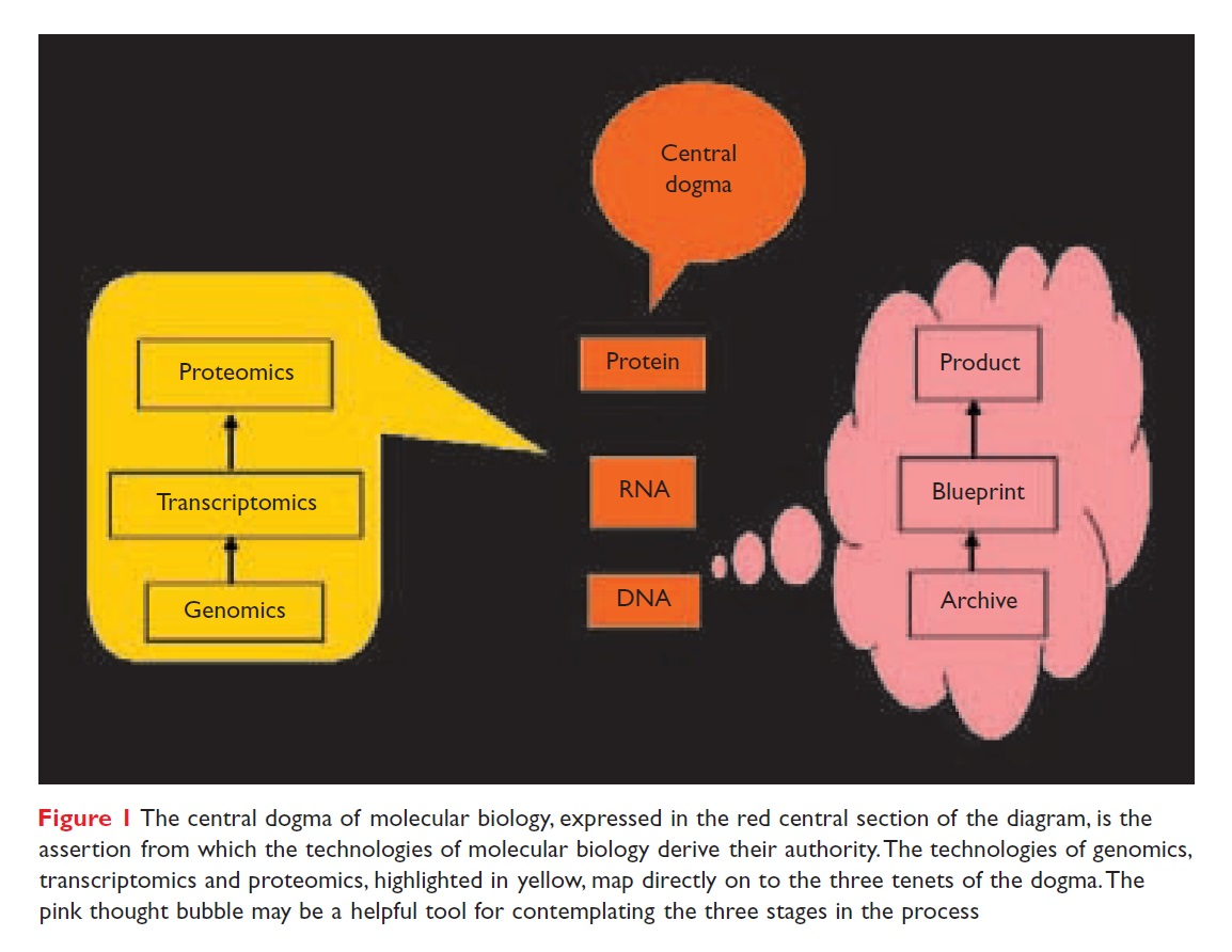 Figure 1 The central dogma of molecular biology