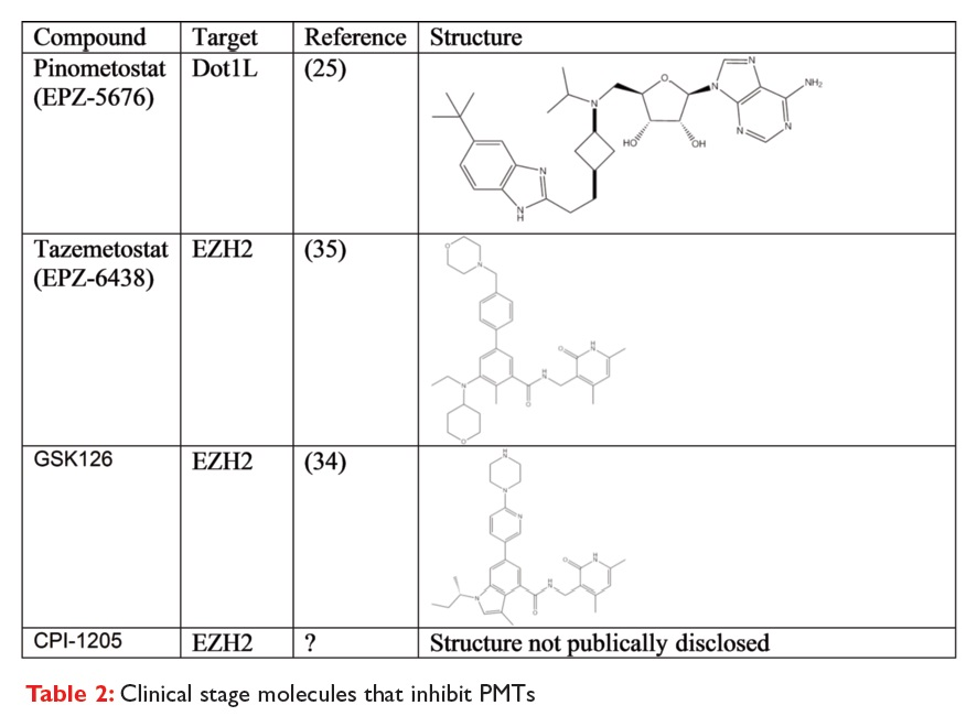 Table 2 Clinical stage molecules that inhibit PMTs