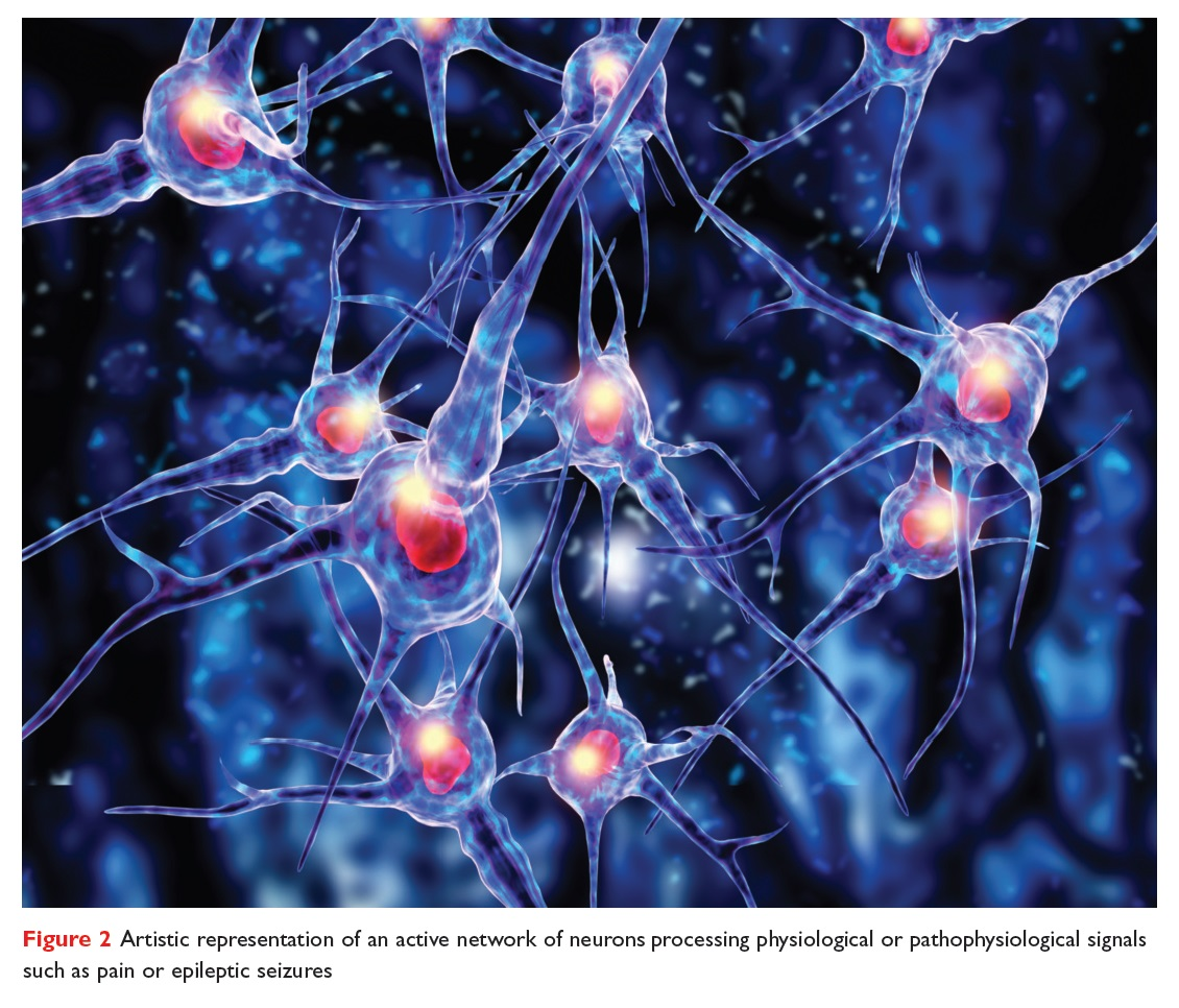 Figure 2 Artistic representation of an active network of neurons processing physiological or pathophysiological signals