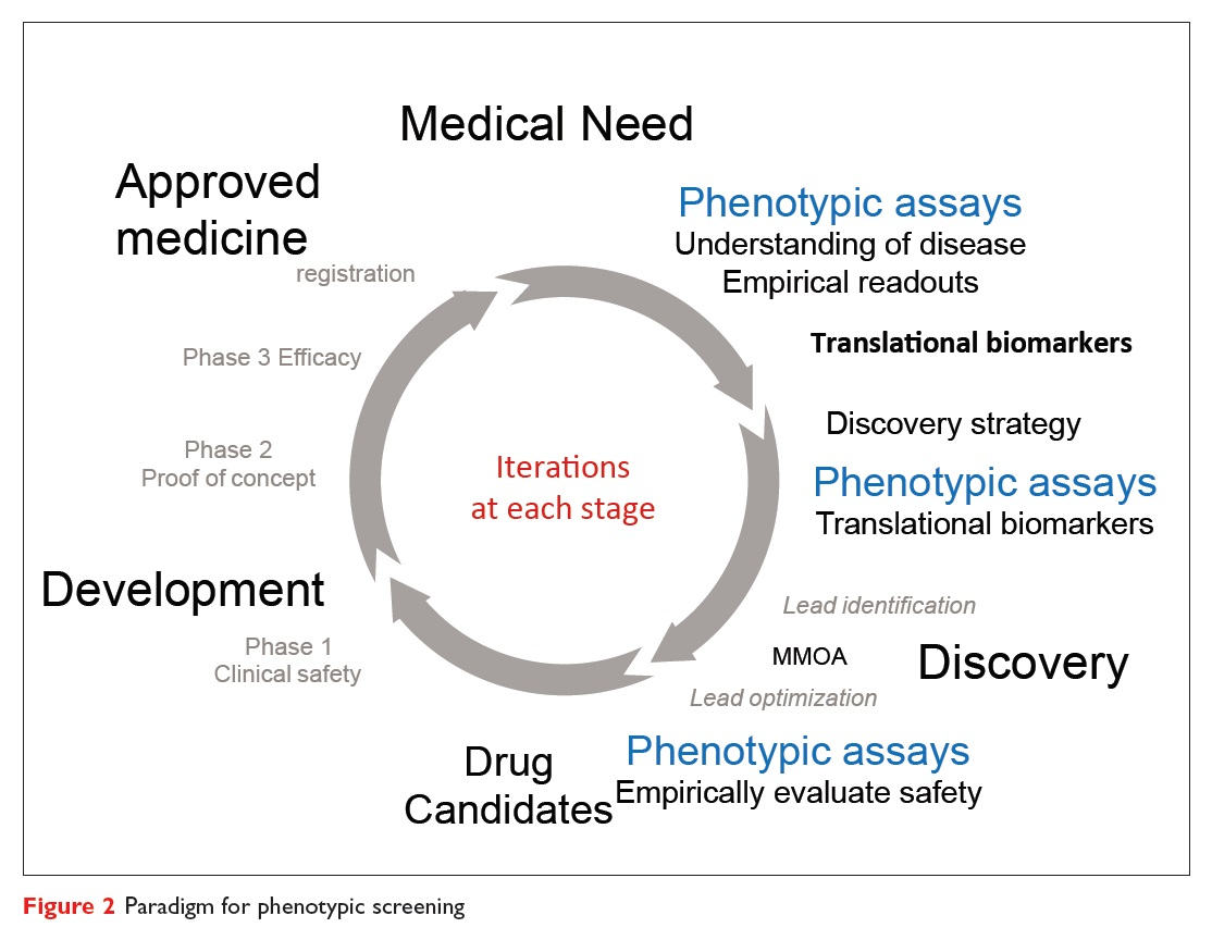 Figure 2 Paradigm for phenotypic screening, iterations at each stage diagram