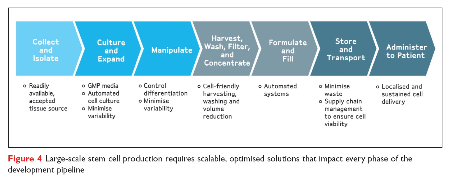 Figure 4 Large-scale stem cell production requires scalable, optimised solutions that impact every phase of the development pipeline