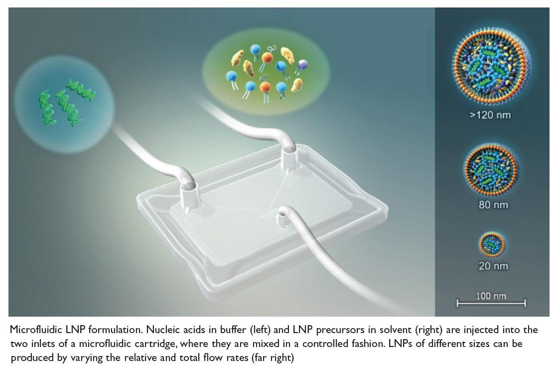 Image 1 Microfluid LNP Formulation
