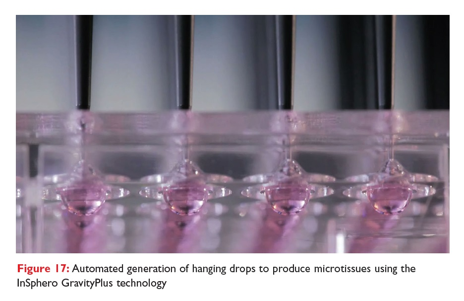 Figure 17 Automated generation of hanging drops to produce microtissues using the InSphero GravityPlus technology