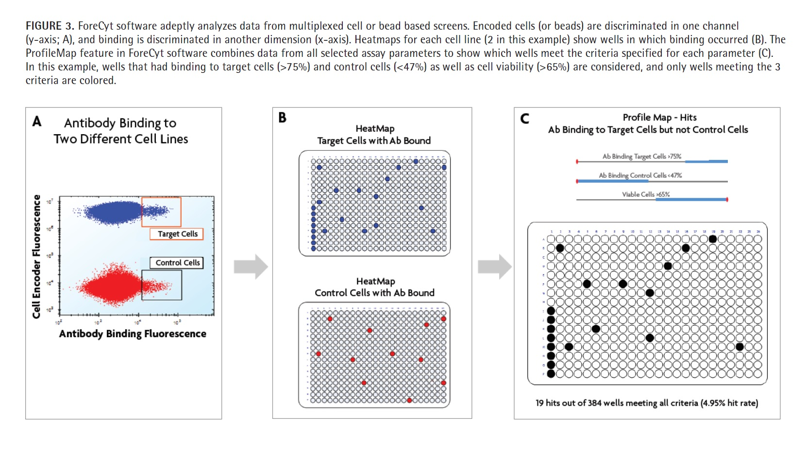 Figure 3 ForeCyt software adeptly analyzes data from multiplexed cell or bead based screens