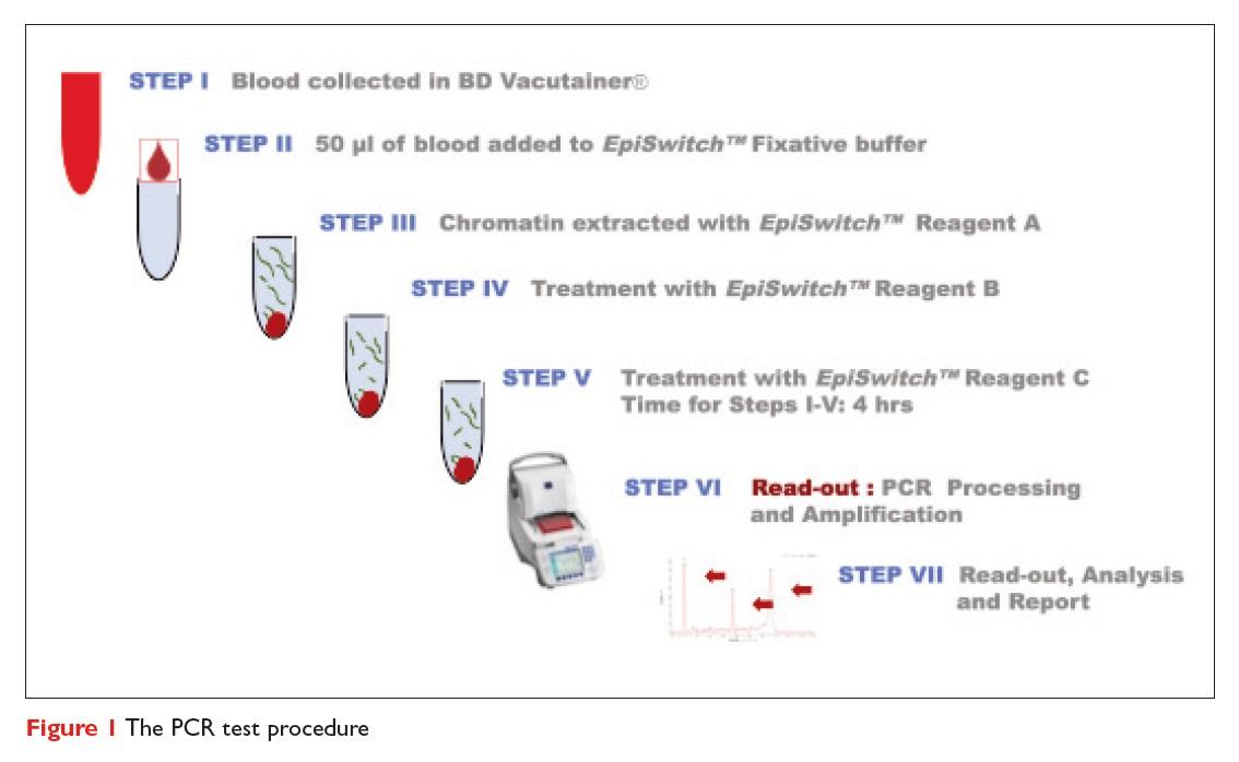 Figure 1 The PCR test procedure