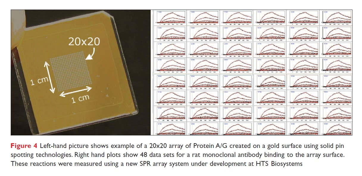 Figure 4 An example of a 20x20 array of Protein A/G created on a gold surgace, and 48 data sets for a rat monoclonal antibody