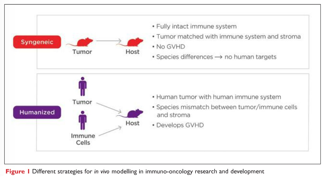 Figure 1 Different strategies for in vivo modelling in immuno-oncology research and development