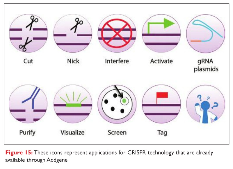 Figure 15 These icons represent applications for CRISPR technology that are already available through Addgene