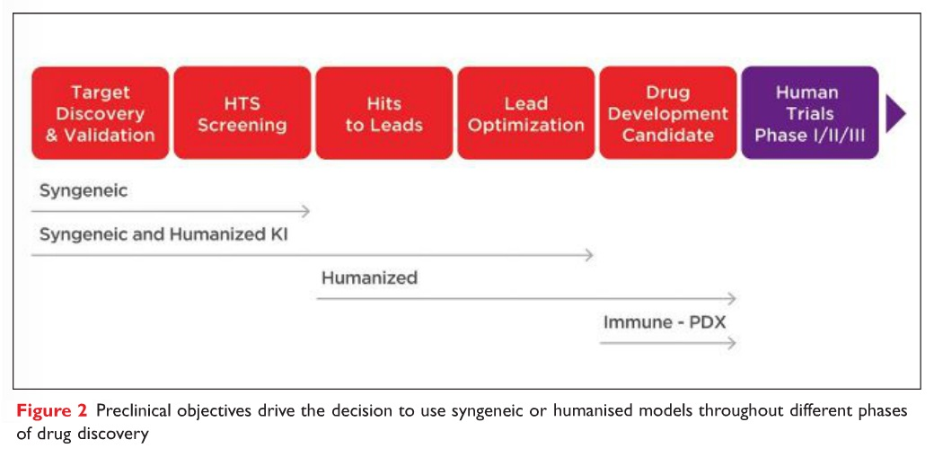 Figure 2 Preclinical objectives drive the decision to use syngeneic or humanised models throughout different phases of drug discovery