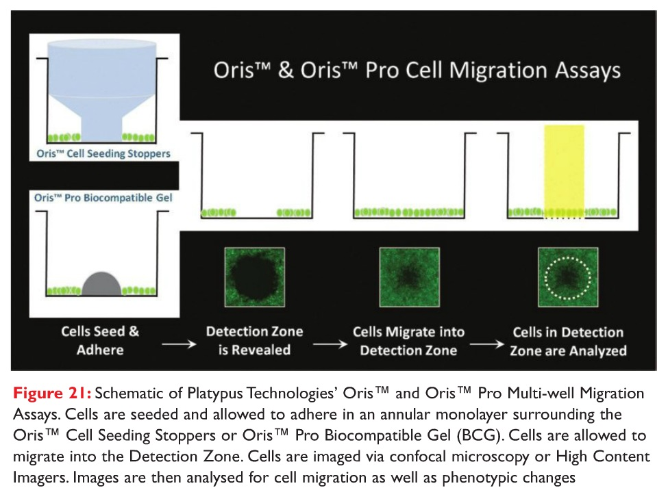Figure 21 Schematic of Platypus Technologies Oris and Oris Pro Multi-well Migration Assays