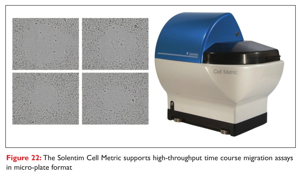 Figure 22 The Solentim Cell Metric