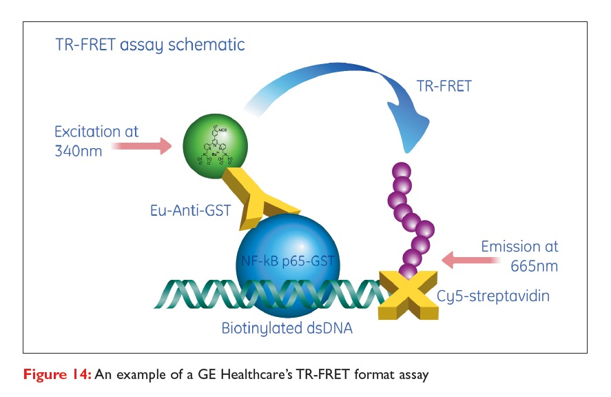 Figure 14 An example of a GE Healthcare's TR-FRET format assay