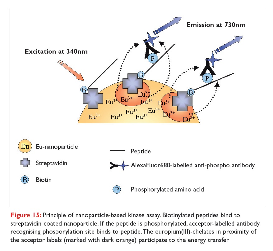 Figure 15 Principle of nanoparticle-based kinase assay