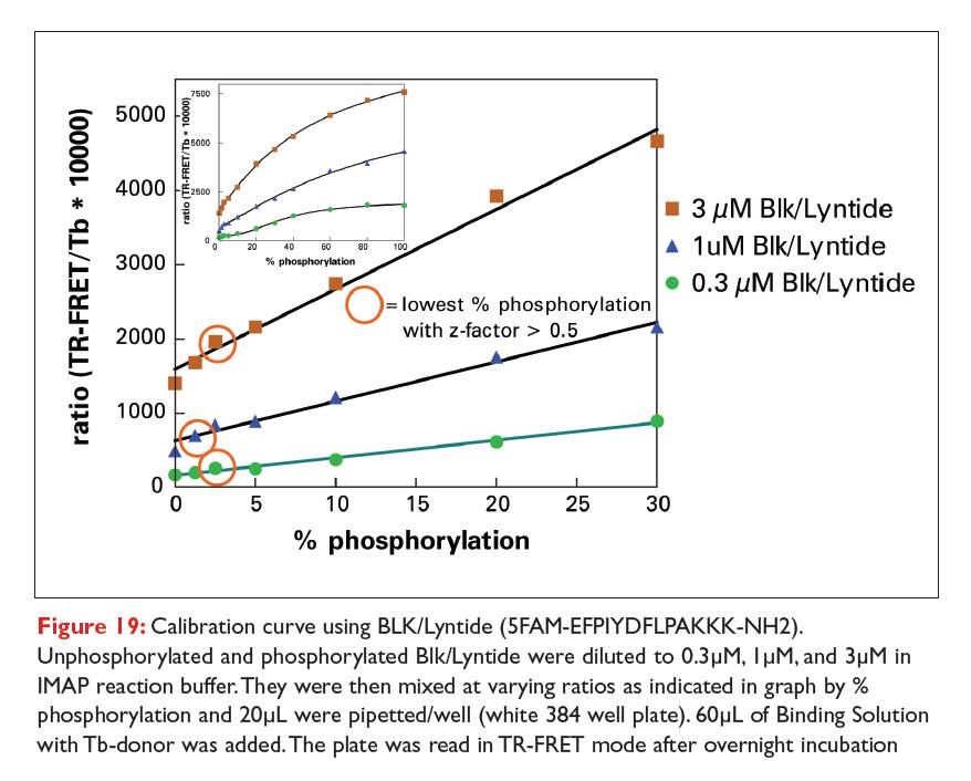 Figure 19 Calibration curve using BLK/Lyntide