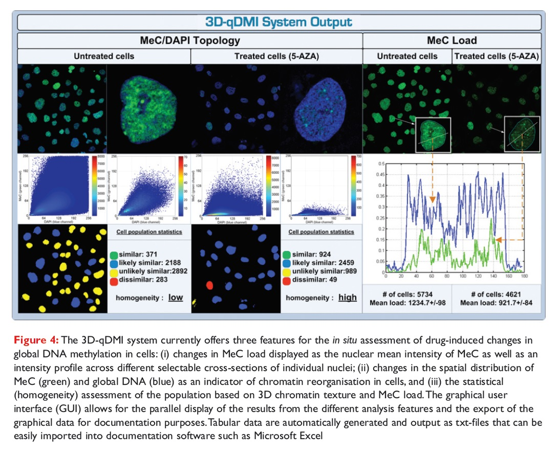 Figure 4 The 3D-qDMI system currently offers three features for the in situ assessment of drug-induced changes in global DNA methylation in cells