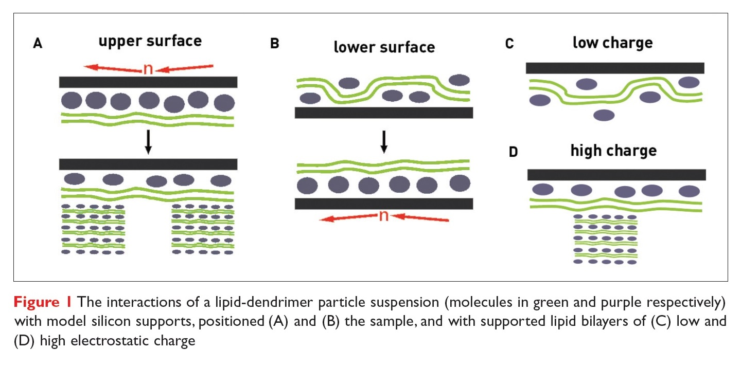 Figure 1 The interactions of a lipid-dendrimer particle suspension with model silicon supports