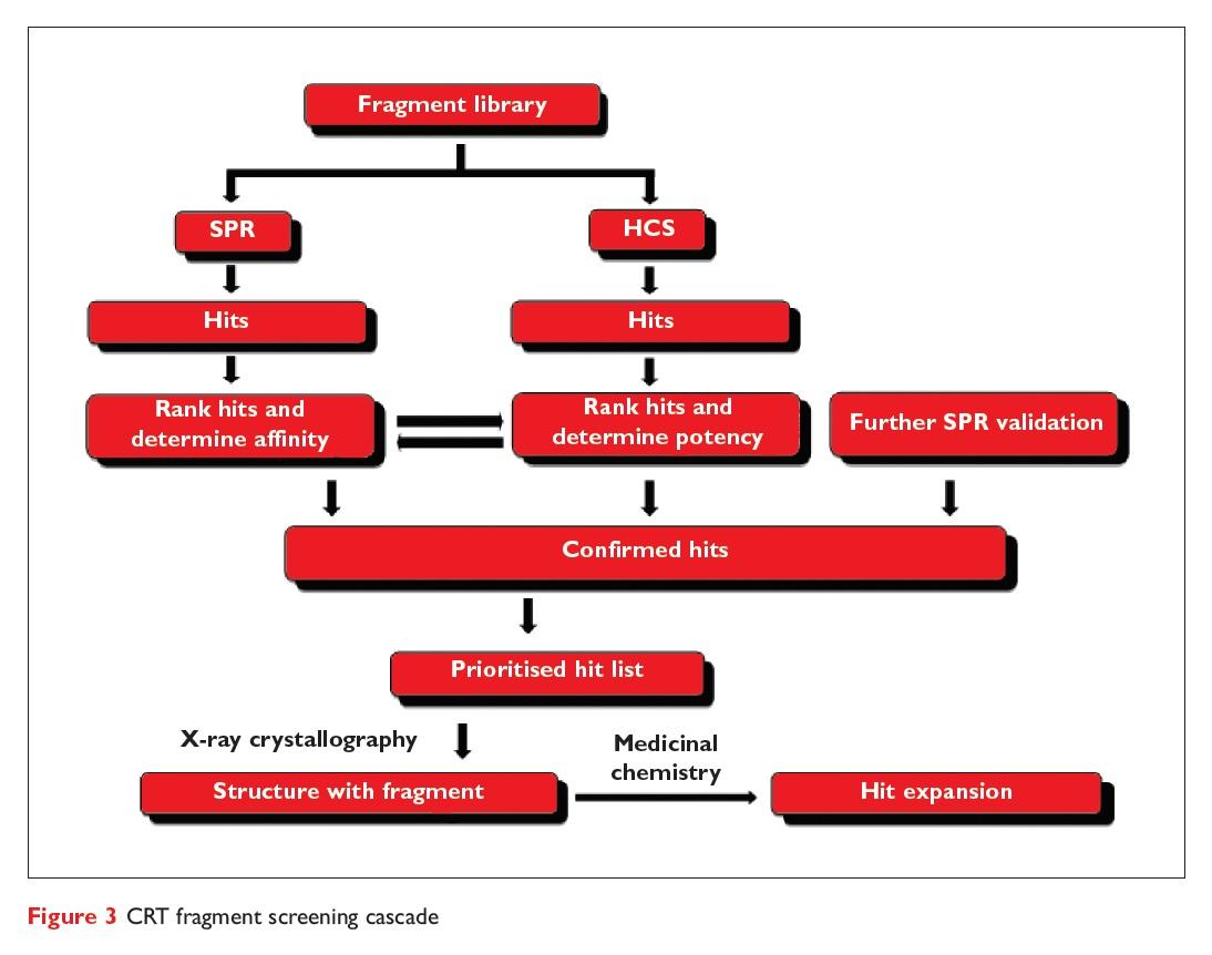 Figure 3 CRT fragment screening cascade