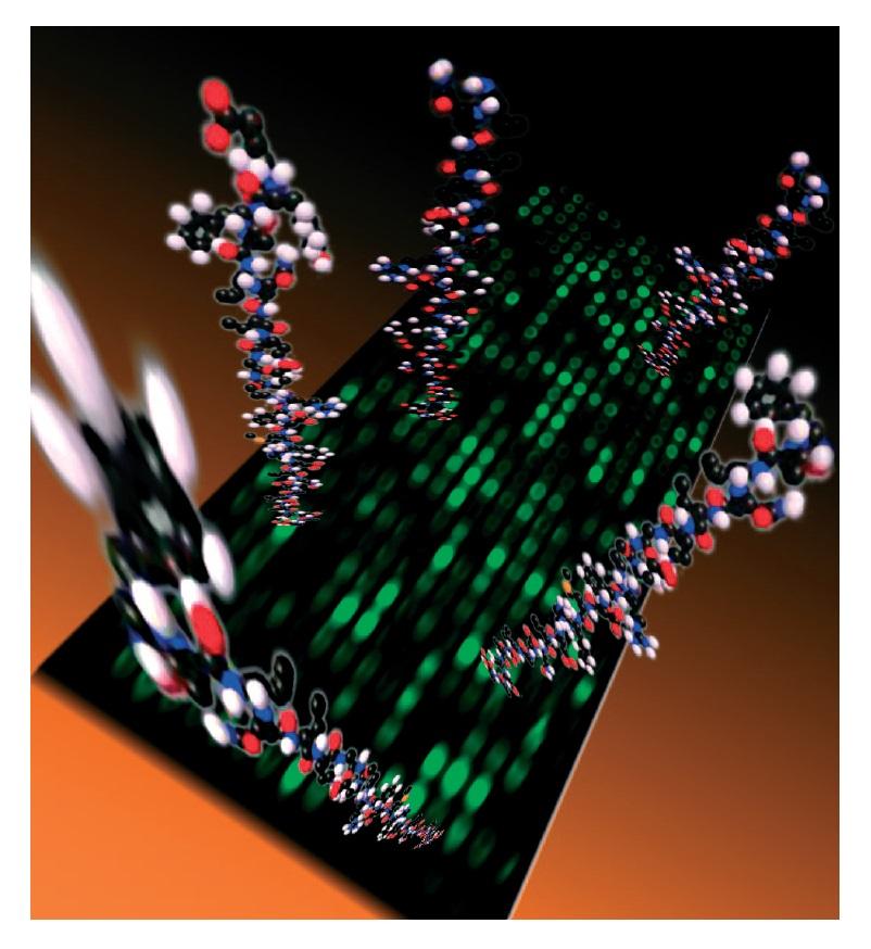 Image 2 Protein biochip illustration