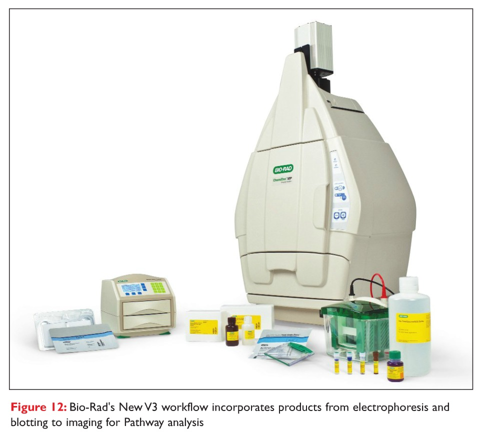 Figure 12 Bio-Rad's New V3 workflow incorporates products from electrophoresis and blotting to imaging for Pathway analysis