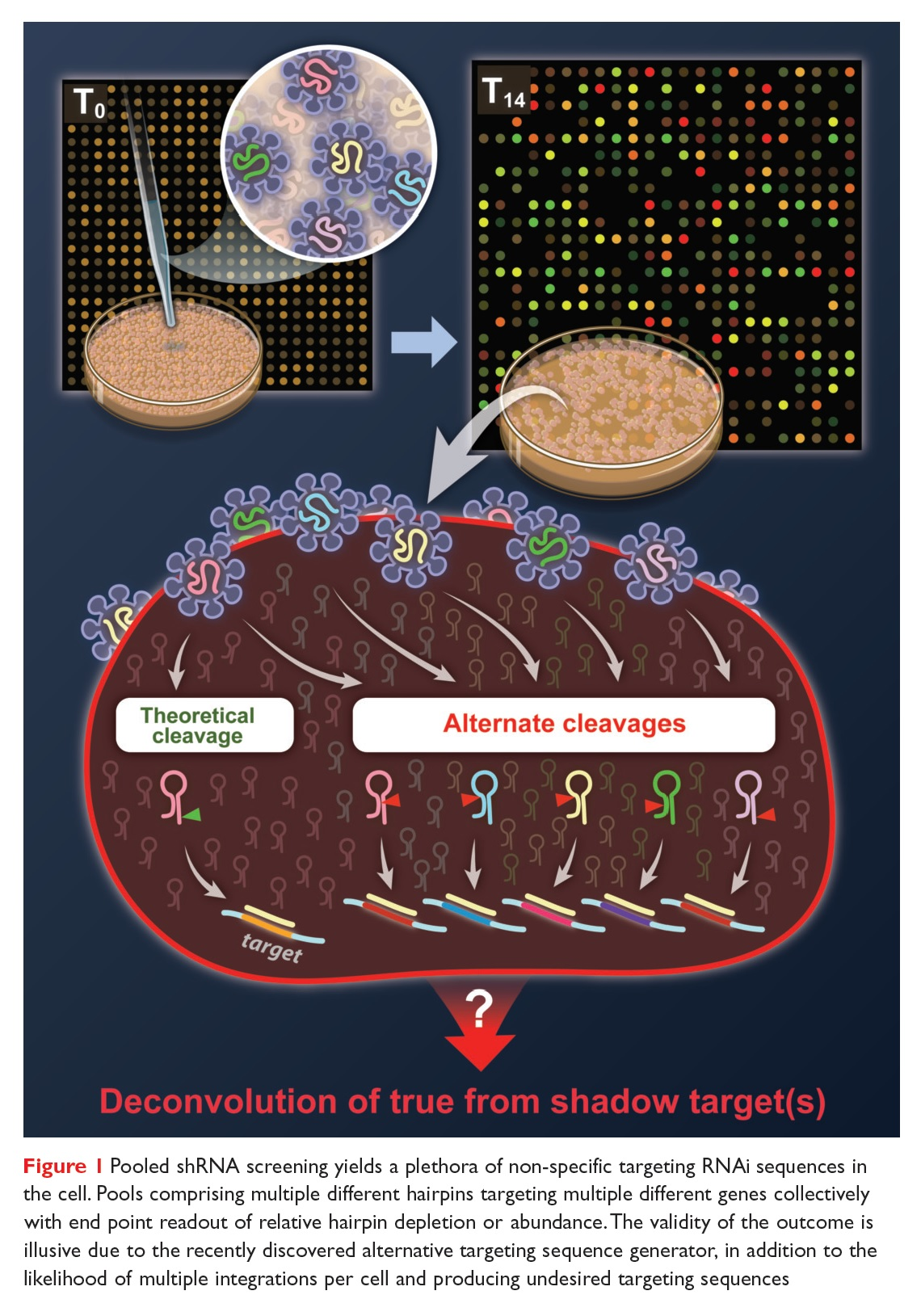 Figure 1 Pooled shRNA screening yields a plethora of non-specific targeting RNAi sequences in the cell