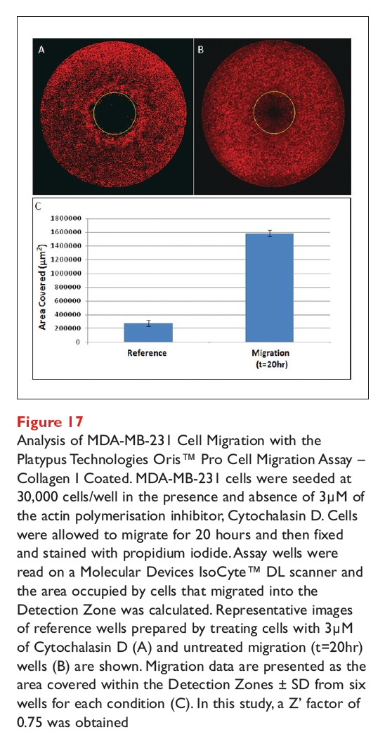Figure 17 Analysis of MDA-MB-231 Cell Migration with the Platypus Technologies Oris Pro Cell Migration Assay Collagen 1 Coated