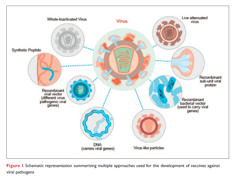 Figure 1 Schematic representation summarising multiple approaches used for development of vaccines