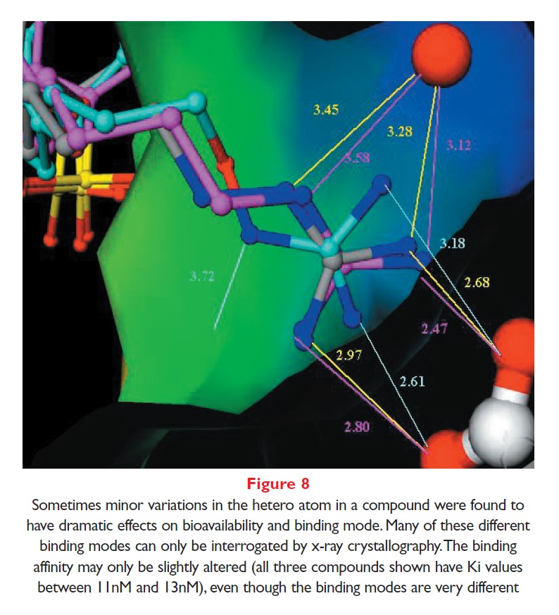 Figure 8 Minor variations in the hetero atom in a compound were found to have dramatic effects on bioavailability and binding mode