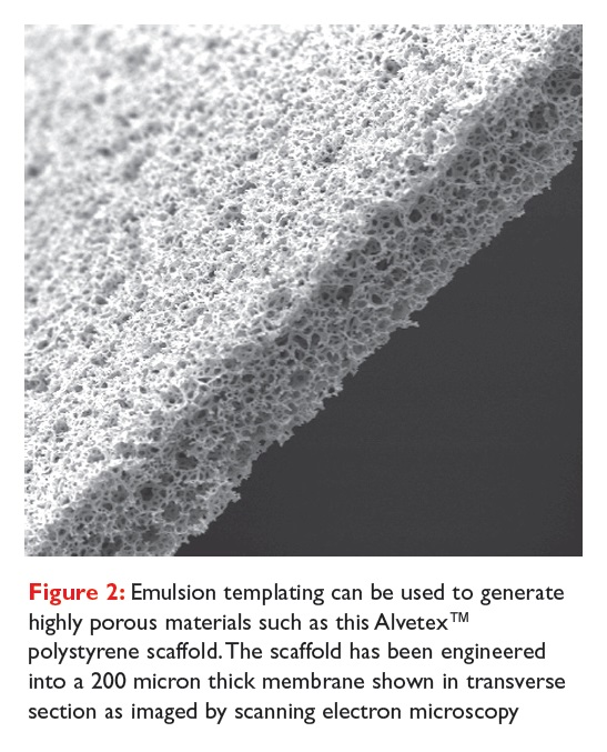 Figure 2 Emulsion templating can be used to generate highly porous aterials such as this Alvetex polystyrene scaffold
