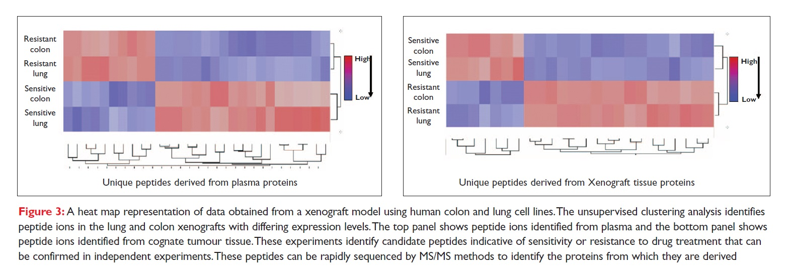 Figure 3 A heat map representation of data obtained from a xenograft model using human colon and lung cell lines