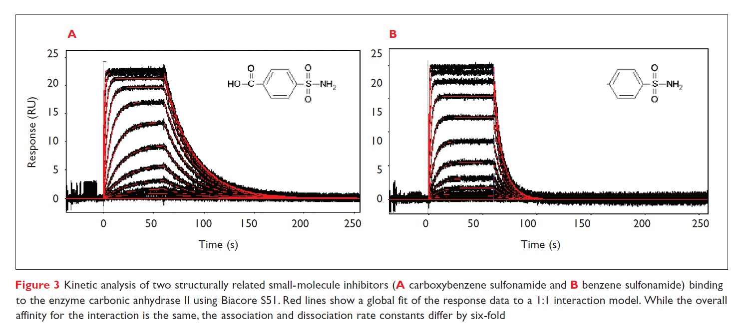 Figure 3 Kinetic analysis of two structurally related small-molecule inhibitors