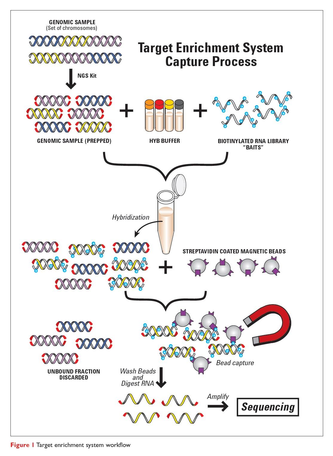 Figure 1 Target enrichment system workflow, enrichment system capture process