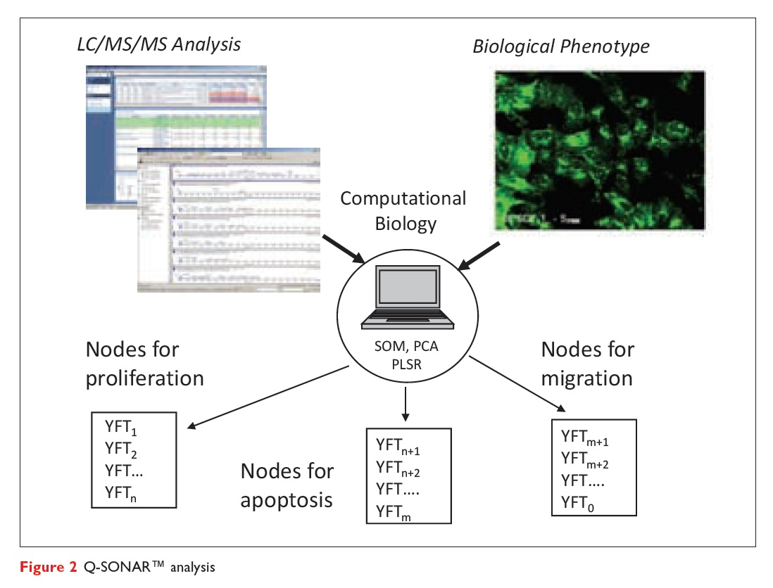 Figure 2 Q-SONAR analysis, computational biology