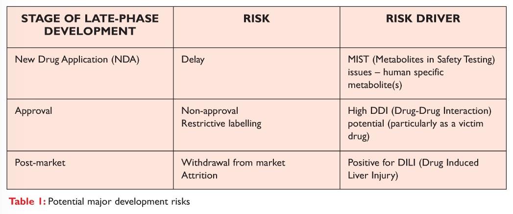 Table 1 Potential major development risks