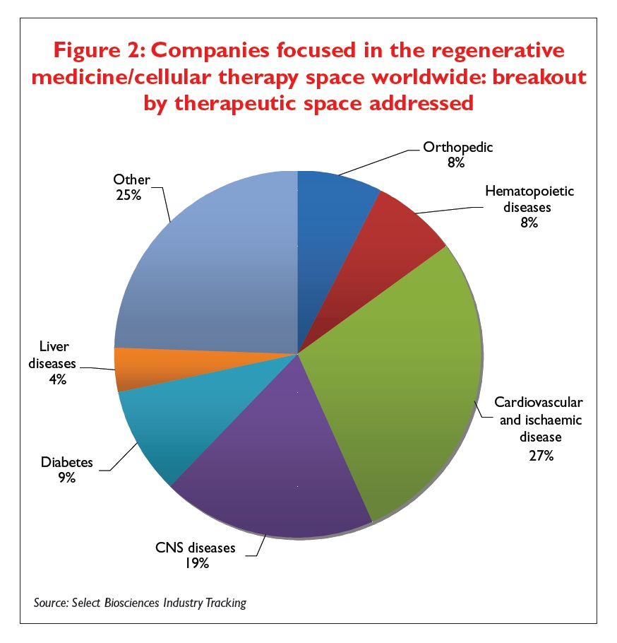 Figure 2 Companies focused in the regenerative medicine/cellular therapy space worldwide: breakout by therapeutic space addressed