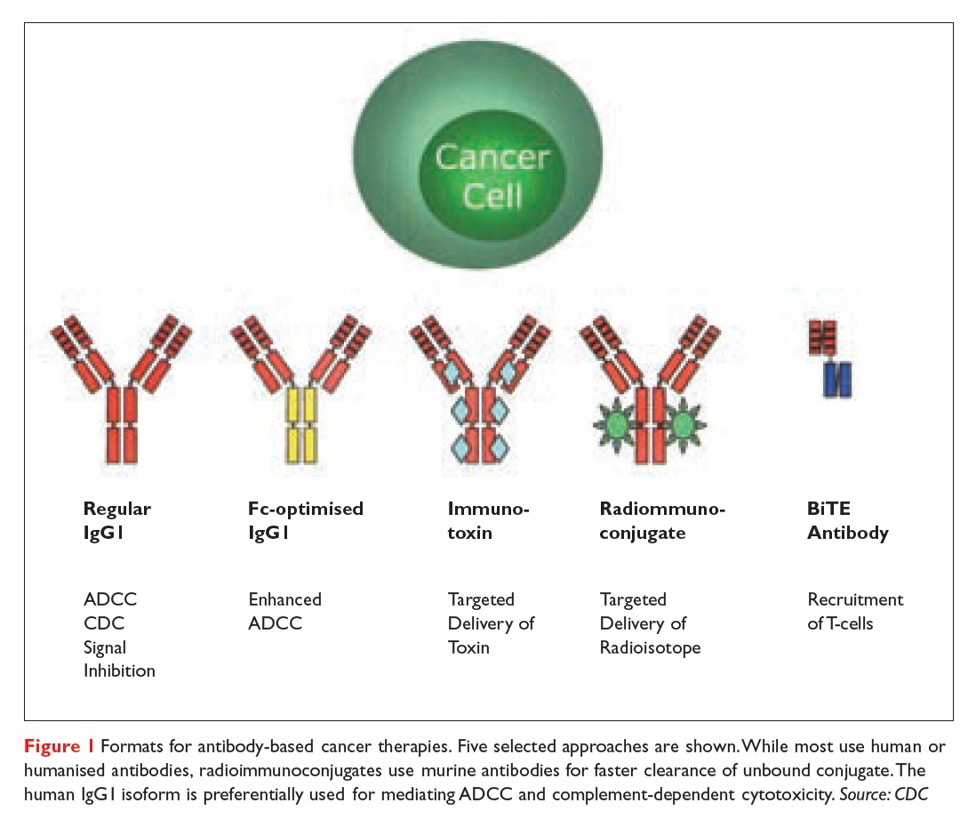 Figure 1 Formats for antibody-based cancer therapies, five selected approaches are shown
