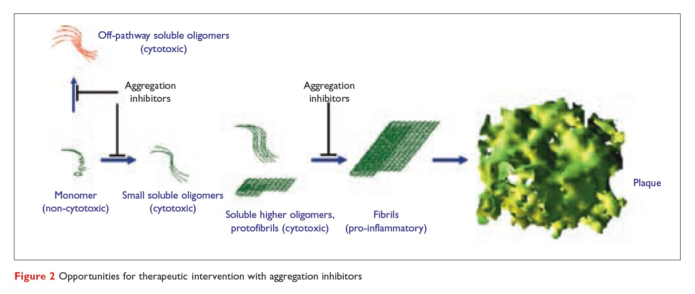 Figure 2 Opportunities for therapeutic intervention with aggregation inhibitors