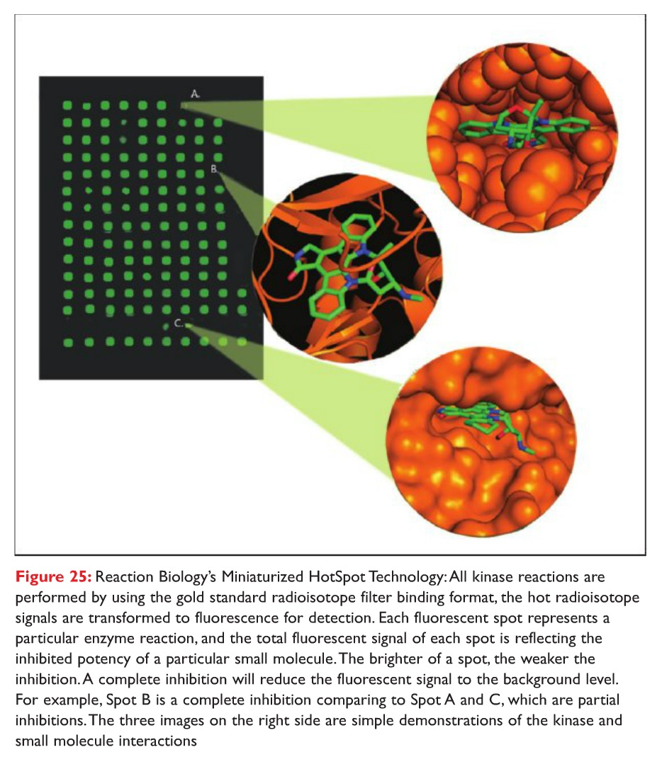 Figure 25 Reaction Biology's Miniaturized HotSpot Technology