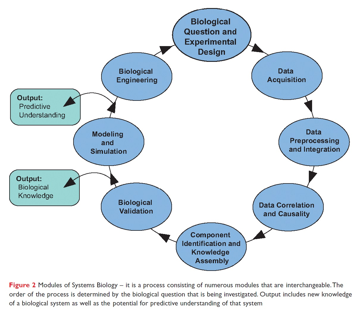 Figure 2 Modules of Systems Biology - it is a process consisting of numerous modules that are interchangeable