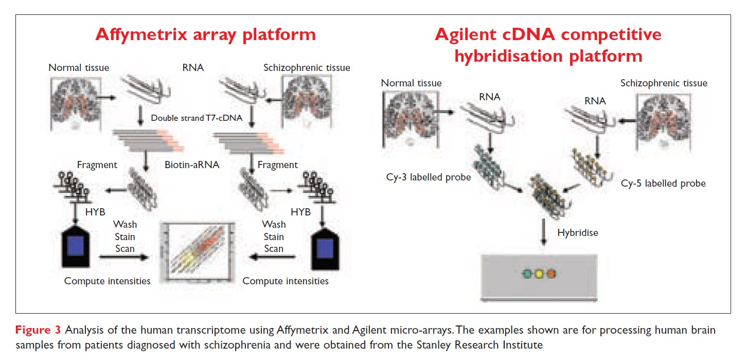 Figure 3 Analysis of the human transcriptome using Affymetrix and Agilent micro-arrays