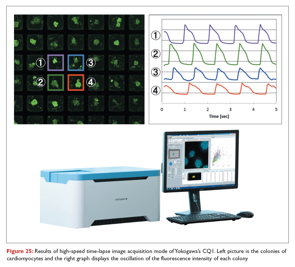 Figure 25 Results of high-speed time-lapse image acquisition mode of Yokogawa's CQ1