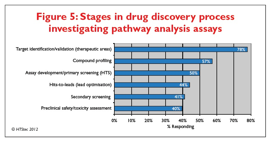 Figure 5 Stages in drug discovery process investigating pathway analysis assays
