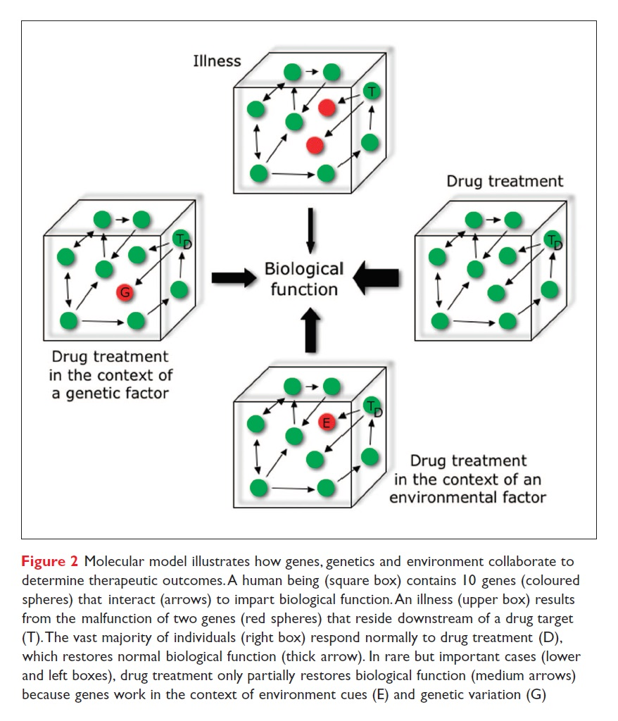 Figure 2 Molecular model illustrates how genes, genetics and environment collaborate to determine therapeutic outcomes