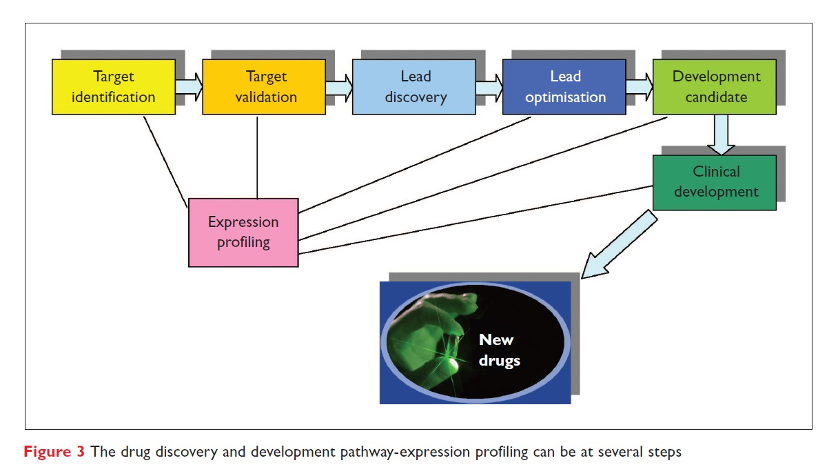 Figure 3 The drug discovery and development pathway-expression profiling can be at several steps