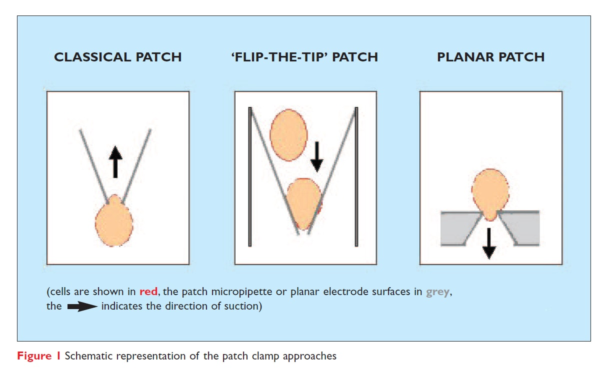 Figure 1 Schematic representation of the patch clamp approaches