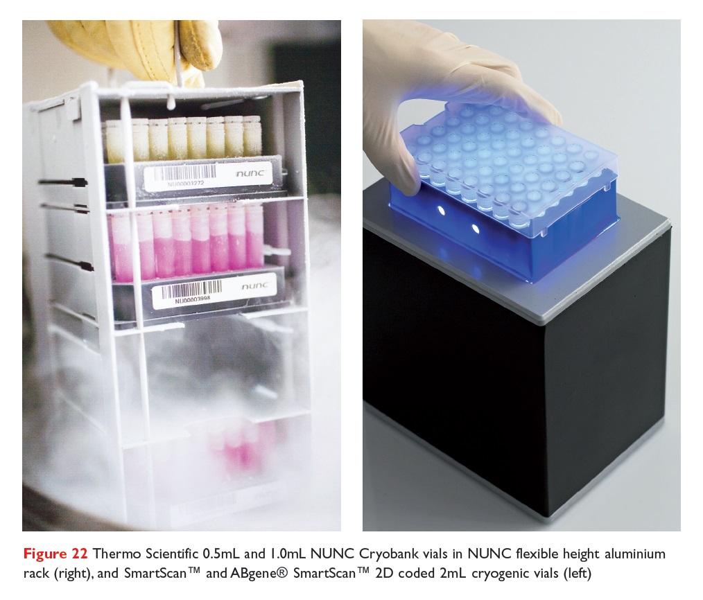 Figure 22 Thermo Scientific 0.5ml and 1.0ml NUNC Cryobank vials in NUNC flexible height aluminium rack